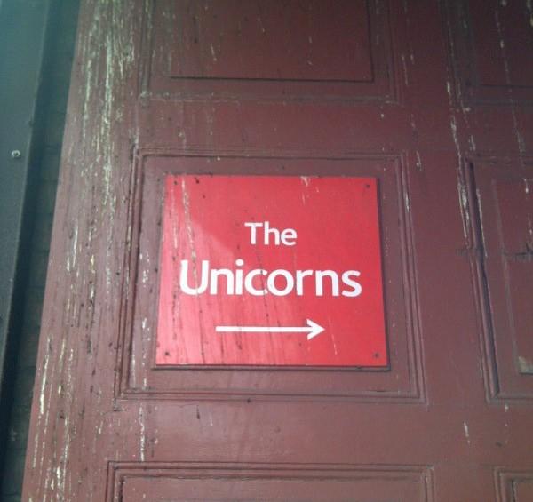 """""""The Unicorns"""""""