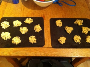 """""""Cookies ready for the oven"""""""
